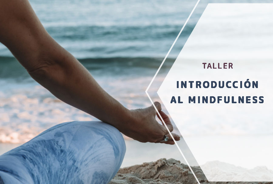 Taller introducción al mindfulness